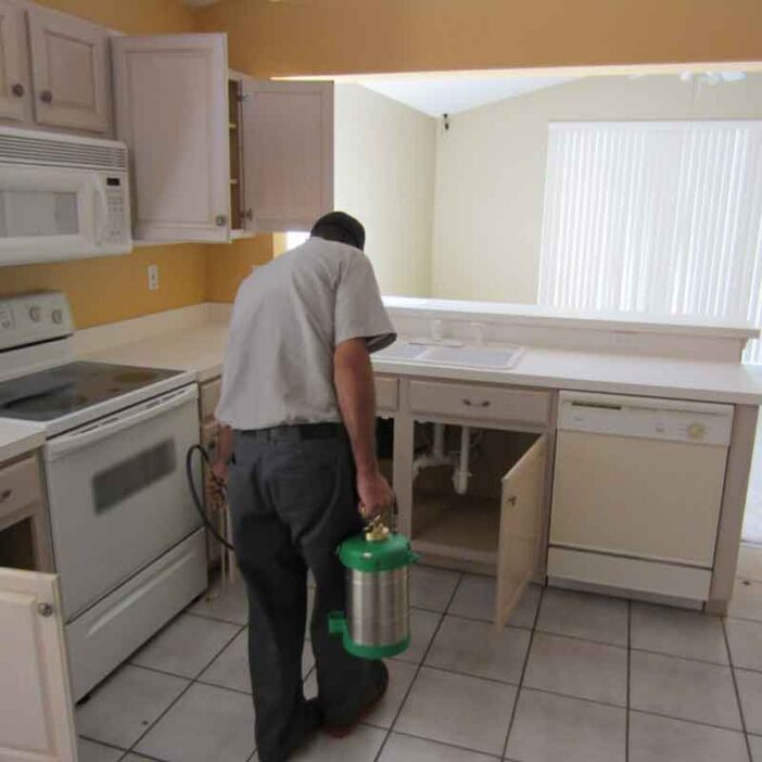 A complete guide to pest proof your kitchen