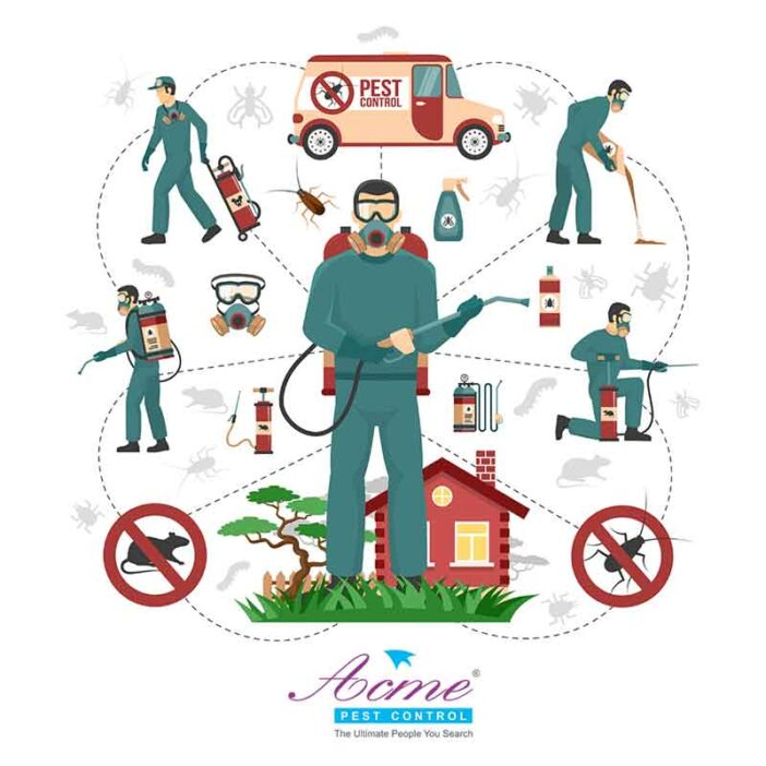 How to handle domestic pests?